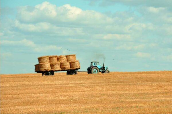 3 Essential Applications of IoT in Agriculture